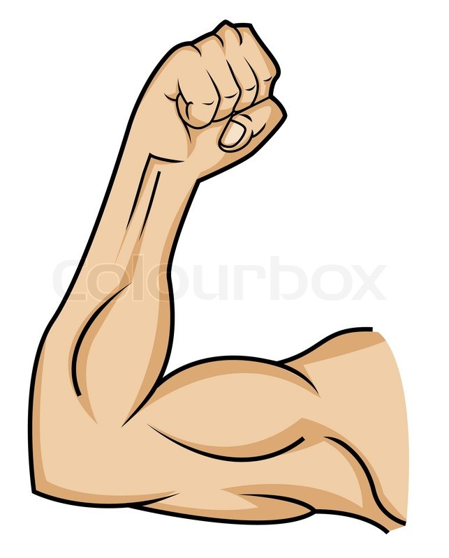 Muscle hand | Stock Vector | Colourbox