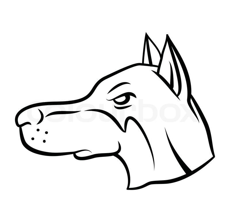 dog head vector illustration  stock vector  colourbox