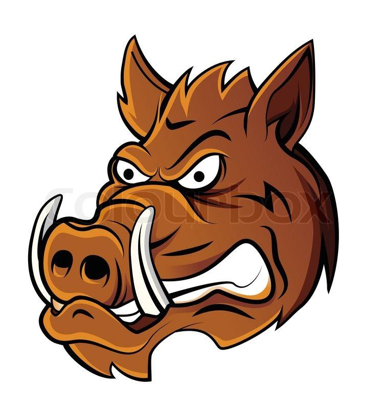 Wild Boar Head | Stock Vector | Colourbox