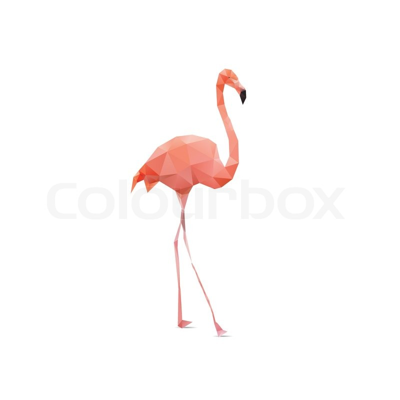Vector - flamingo geom...