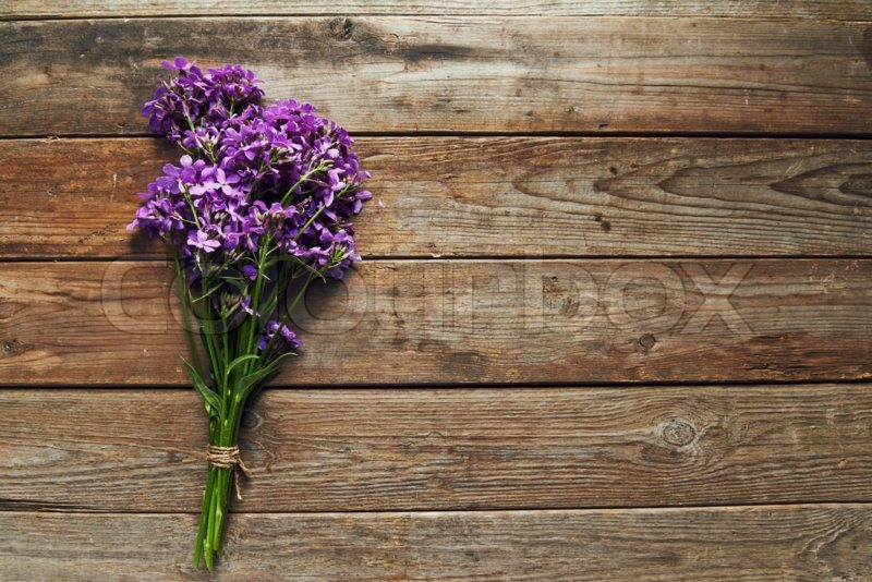 Bunch of willow-herb on wooden background, stock photo