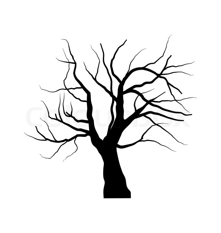 illustration sketch of dead tree without leaves isolated on white rh colourbox com dead tree vector free