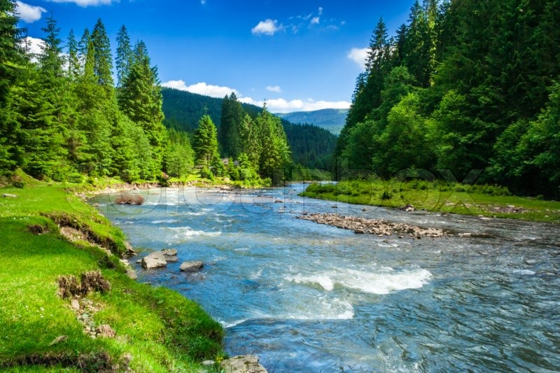 Stock image of 'landscape with mountains trees and a river in front'