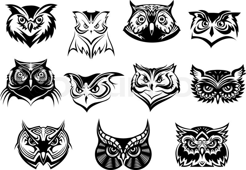 Large set of black and white vector owl heads showing different species and plumage vector illustration isolated on white stock vector colourbox