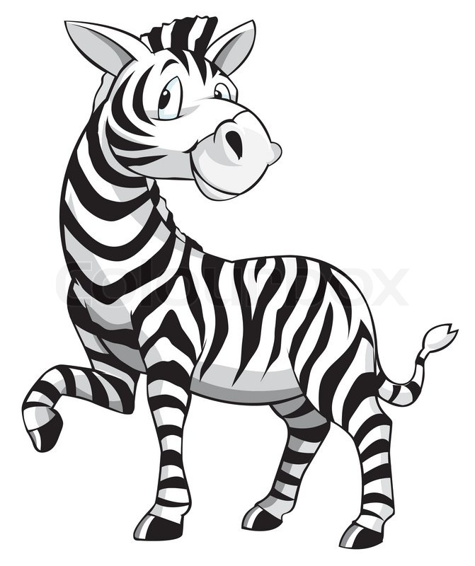 Zebra Cartoon | Vector | Colourbox: colourbox.com/vector/zebra-cartoon-vector-11457059
