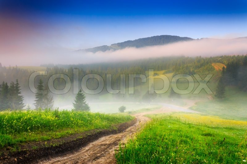 Stock image of 'crossroads of mountain roads near the woods and glade in the morning mist'