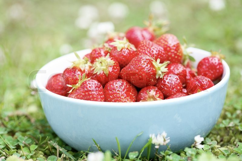 Stock image of 'Bowl of fresh strawberries'