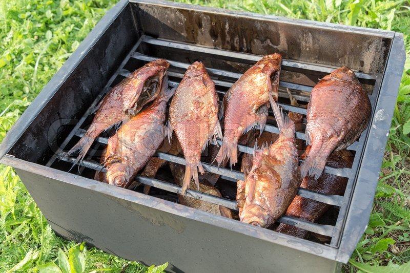 Коптильня для рыбы переносная