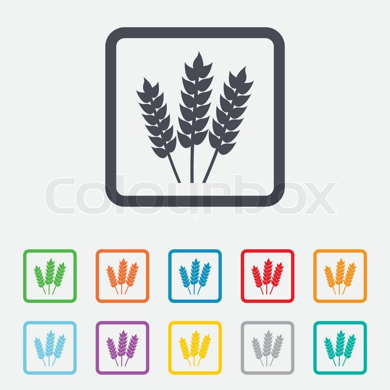 Agricultural sign icon  Gluten free or     | Stock vector