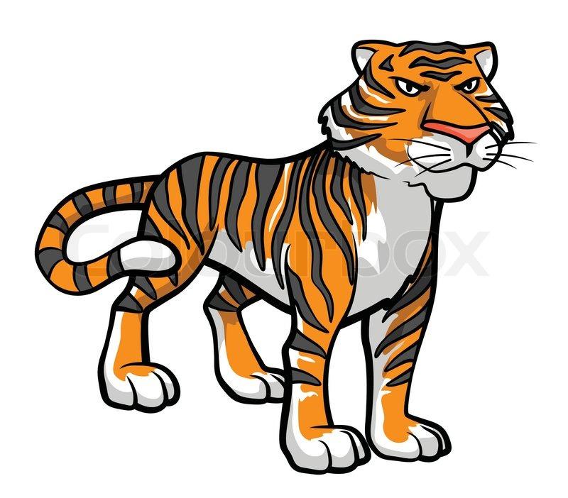 Tiger Cartoon   Stock Vector   Colourbox