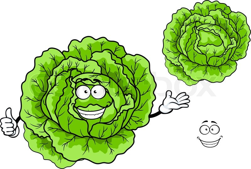 Happy fresh green cartoon cabbage vegetable character ...