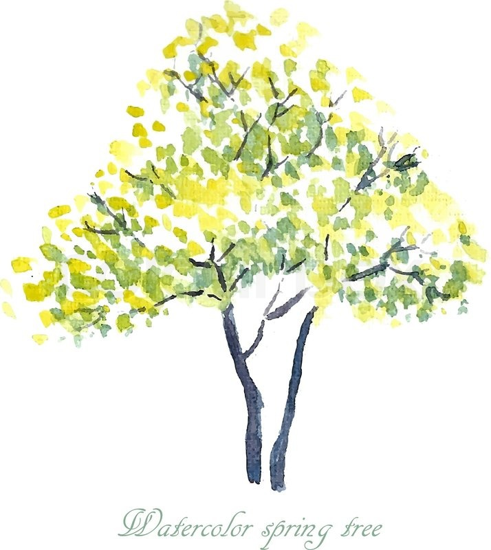 Spring Tree Spring Background Watercolor Illustration Vector 11637757