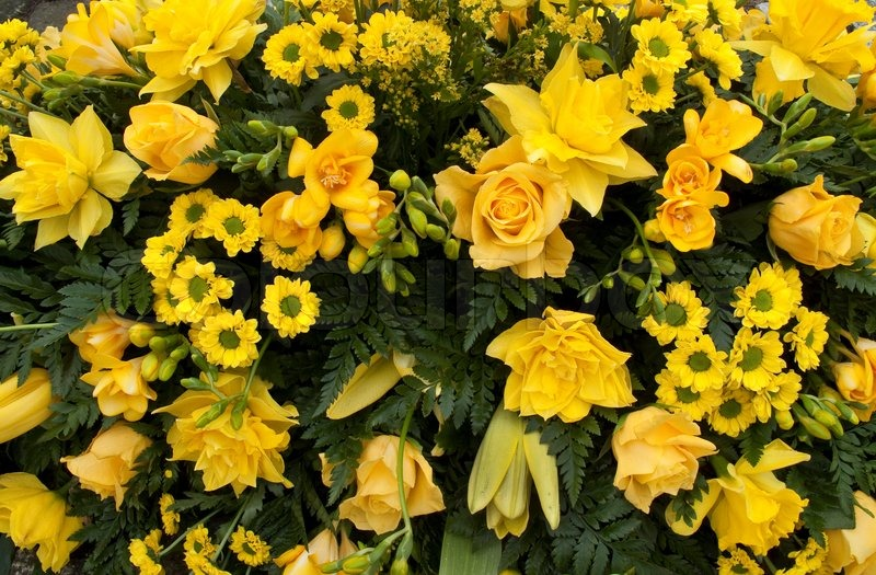 gelbe ostern dekoration f r eine beerdigung d nemark stockfoto colourbox. Black Bedroom Furniture Sets. Home Design Ideas