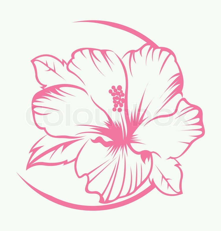 Hibiscus Flower Symbol Stock Vector Colourbox