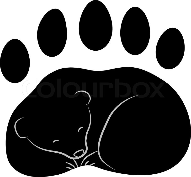 bear footprints template - trace of the bear 39 s paw with claws vector stock vector