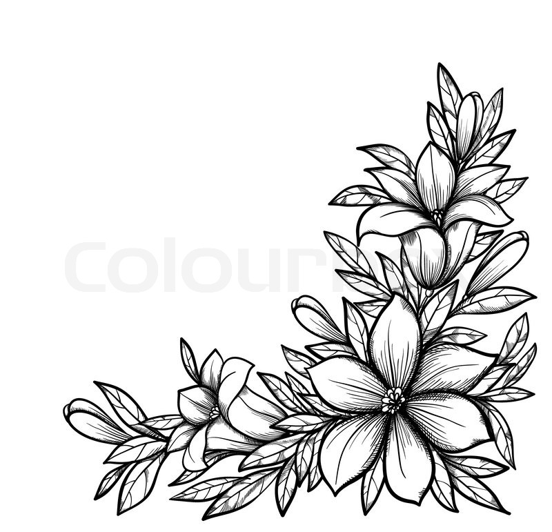 Black To Black Flowers 4: Beautiful Black And White Branch With ...