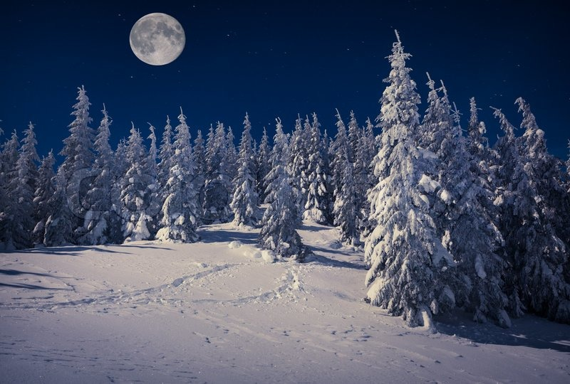 Stock image of 'Beautiful winter landscape in the mountains at night ...