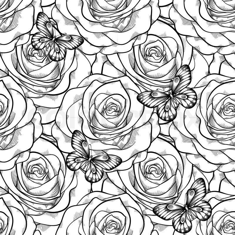 Line Drawing Backgrounds : Beautiful black and white seamless pattern in roses with