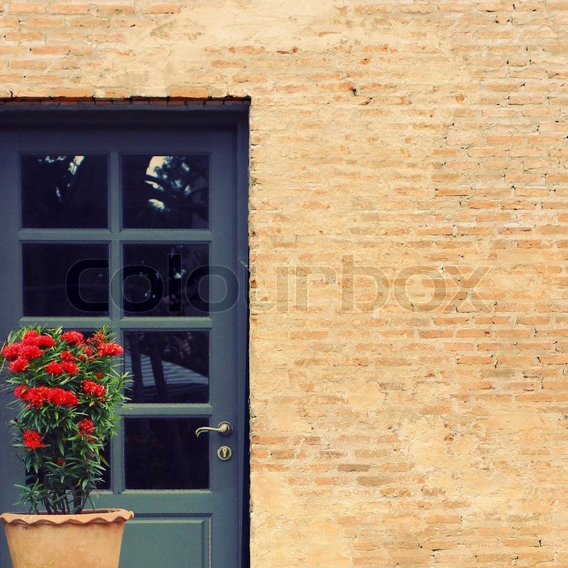 Front door of vintage house with flower pot, retro filter effect, stock photo