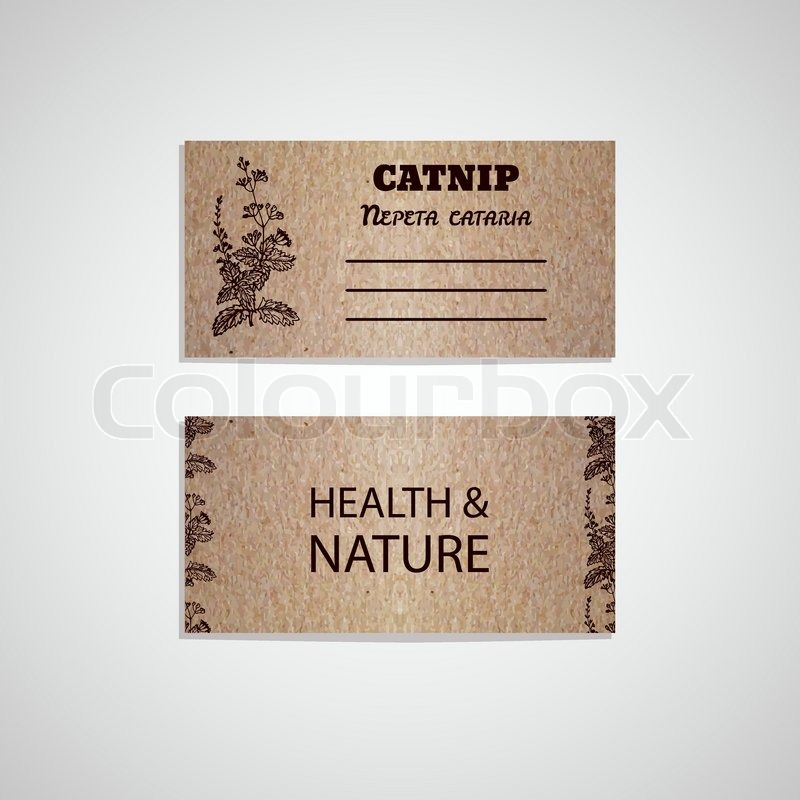 Health and nature collection cardboard business card template with health and nature collection cardboard business card template with a herb catnip nepeta cataria stock vector colourbox reheart Gallery