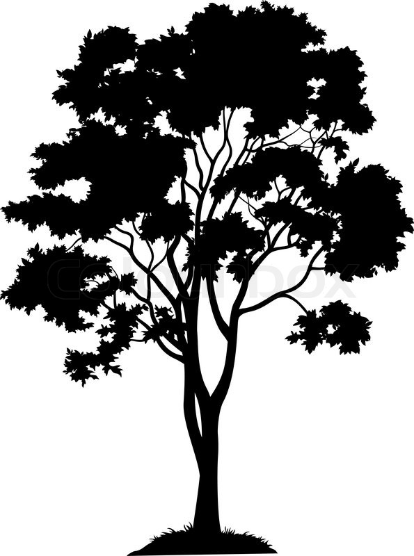 maple tree with leaves and grass  black silhouette on white background vector stock vector willow tree clip art with yoga kids black and white willow tree clipart