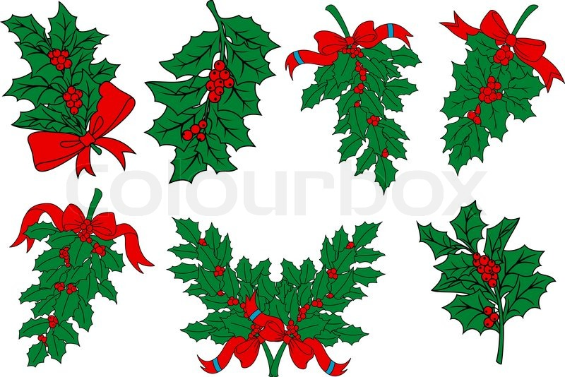 christmas greens and holly berry branches with red ribbons for seasonal holiday design vector - Christmas Greens