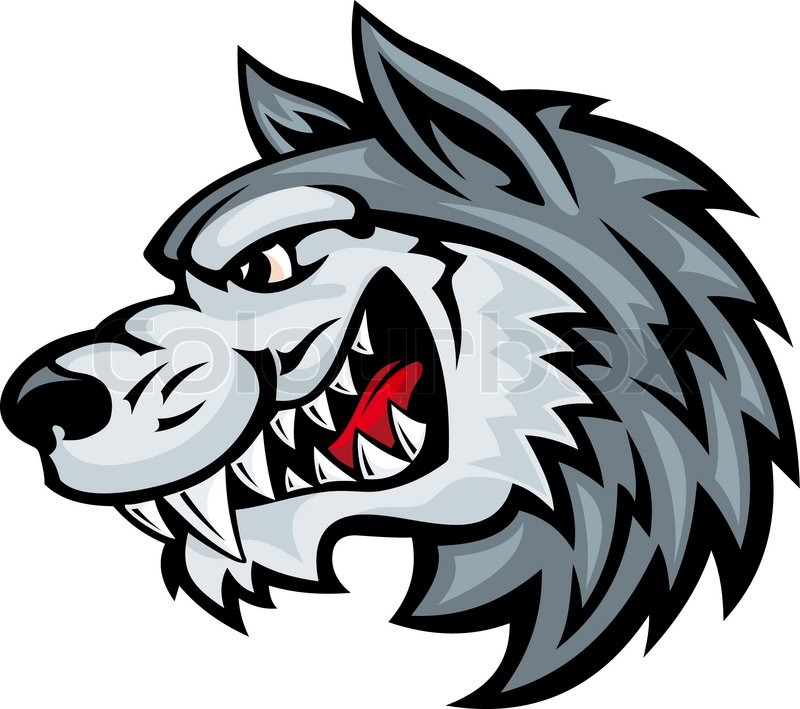 Cartoon angry wolf head isolated on white background ...
