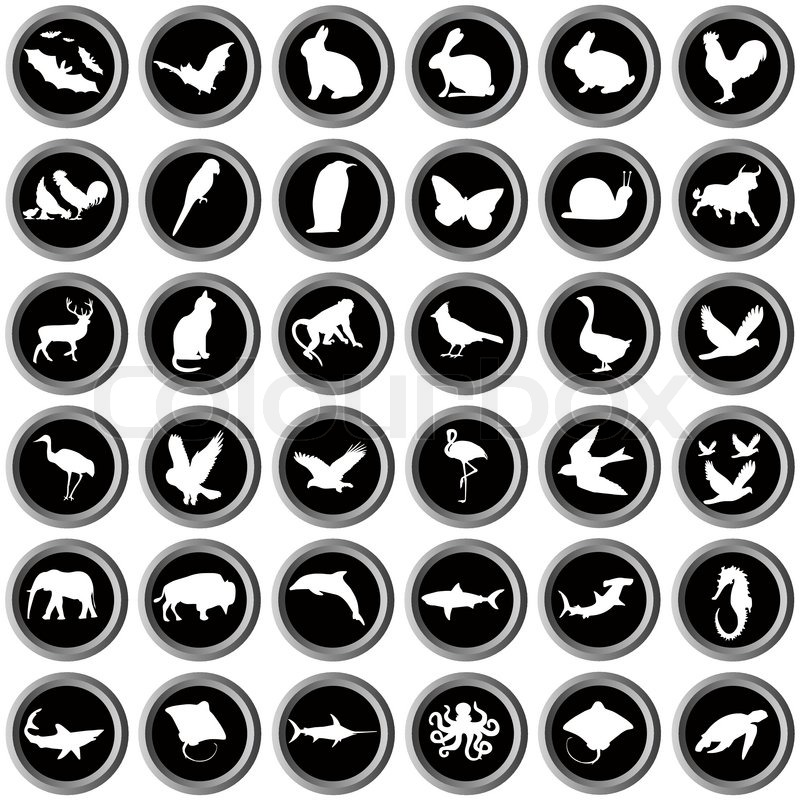 Stock vector of 'clipart, animals, animal'