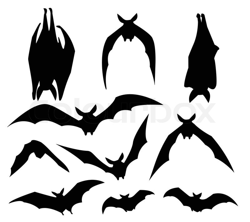 bat silhouette of various movement for design usage vector