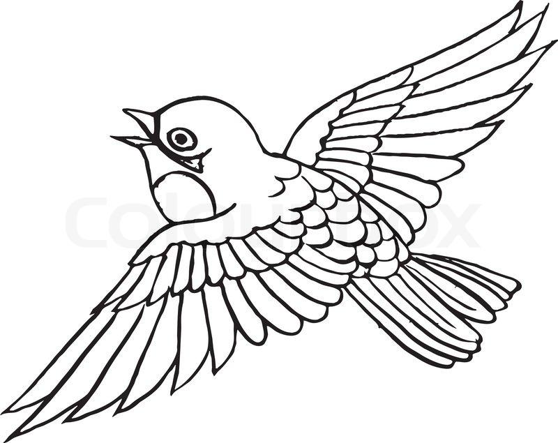 Clipart, sparrow, clip   Vector   Colourbox: www.colourbox.com/vector/vector-1199414