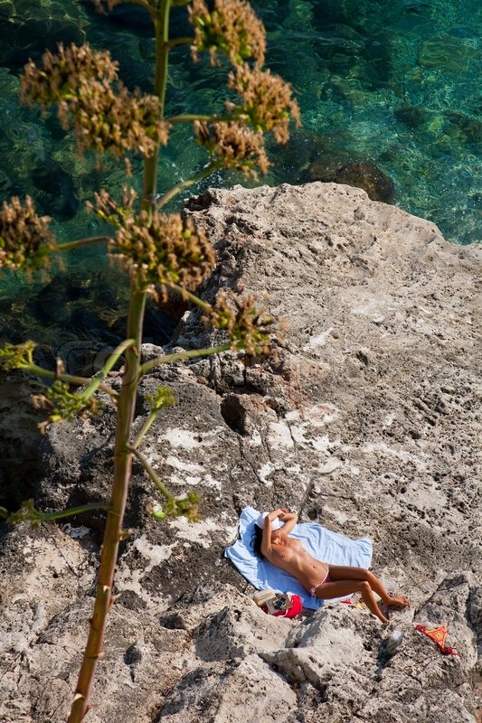 Young topless female sunbathing on the    Stock image
