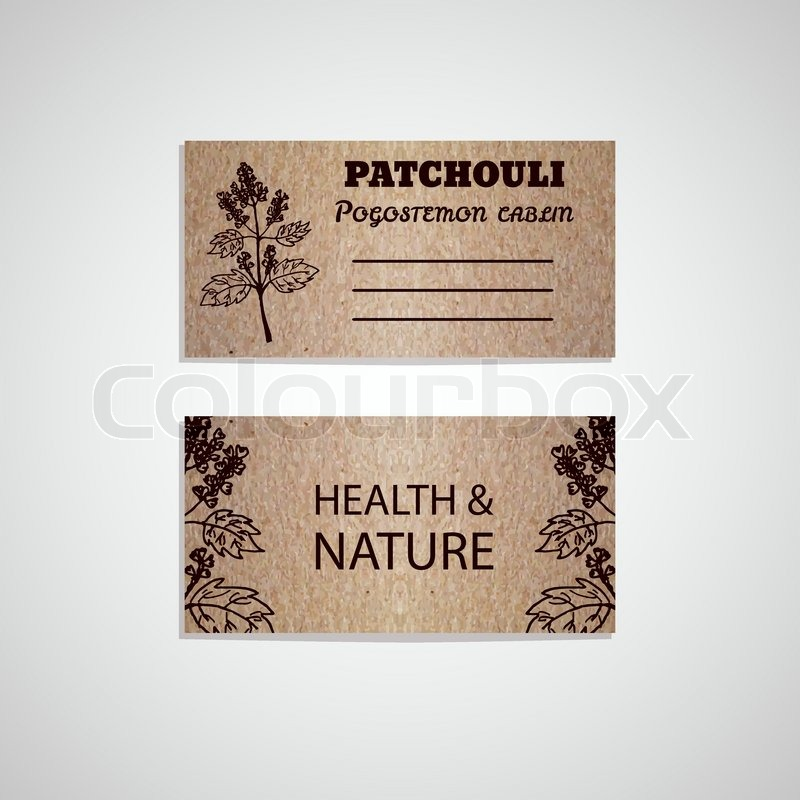 Health and nature collection cardboard business card template with health and nature collection cardboard business card template with a herb patchouli pogostemon cablin stock vector colourbox reheart Images