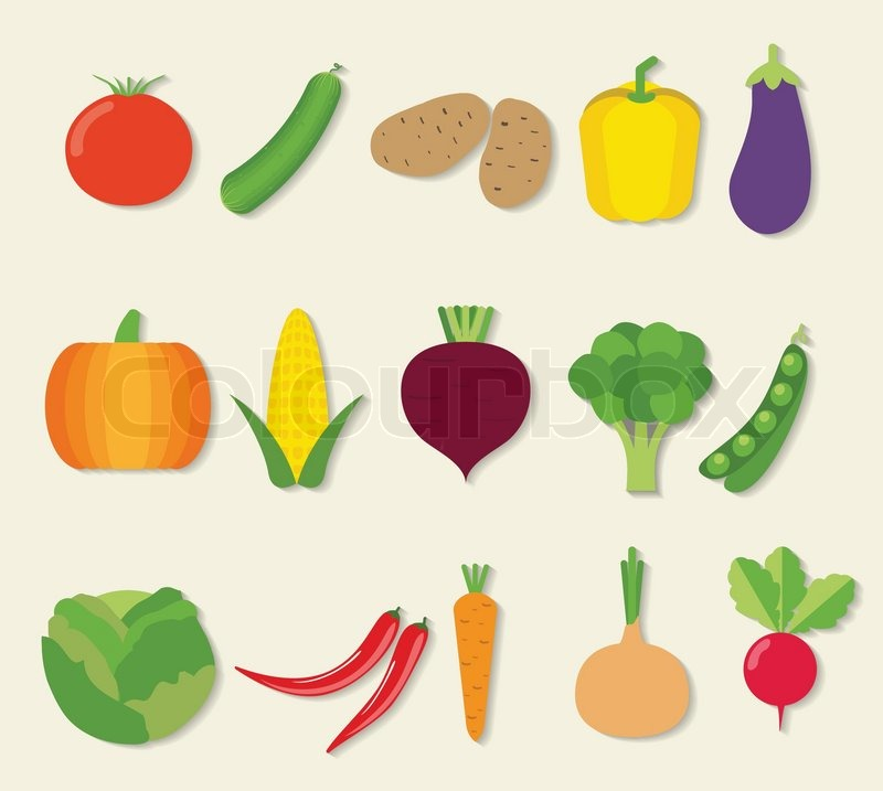 vegetable flat icon set the image of vegetables symbol