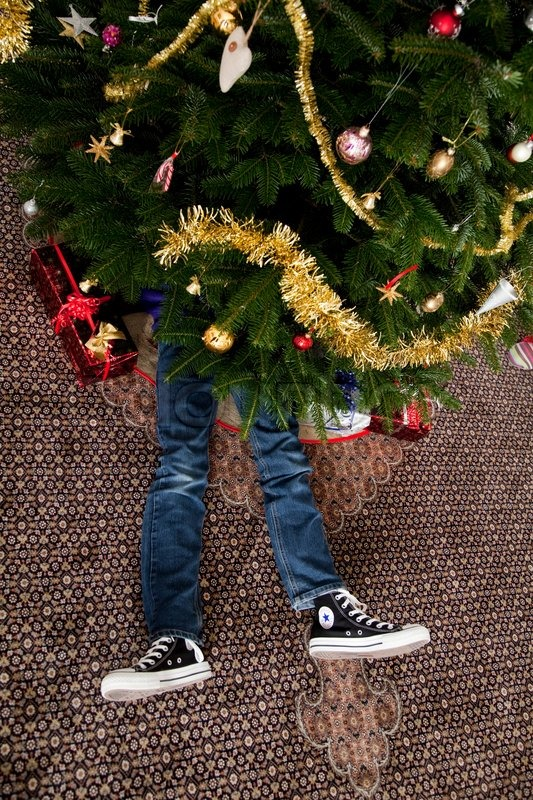 a young boy lying under the christmas tree with presents stock photo colourbox