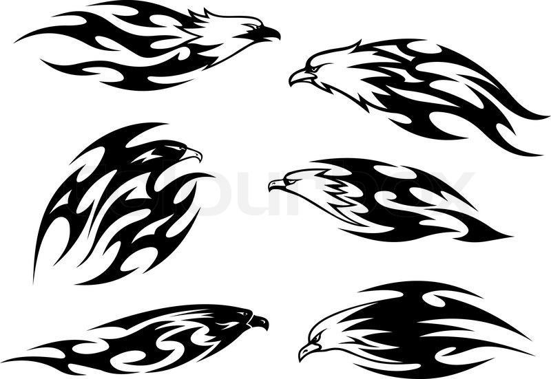 black and white flying eagles falcons and hawks in tribal