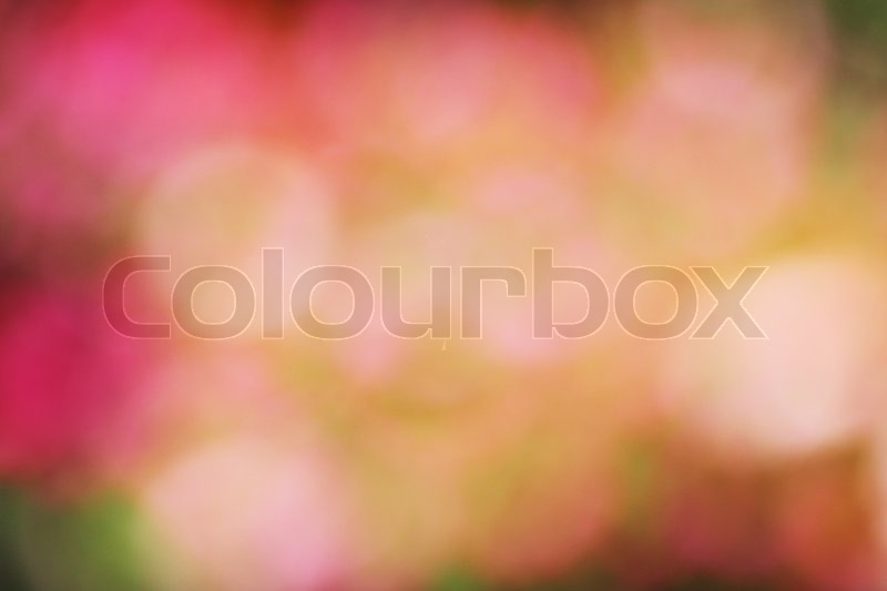 Green colorful garden blur background, stock photo