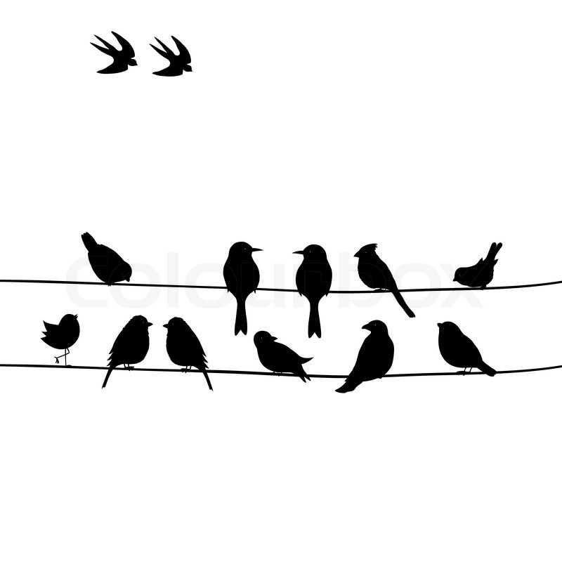 Cute black birds on a wire | Stock Vector | Colourbox