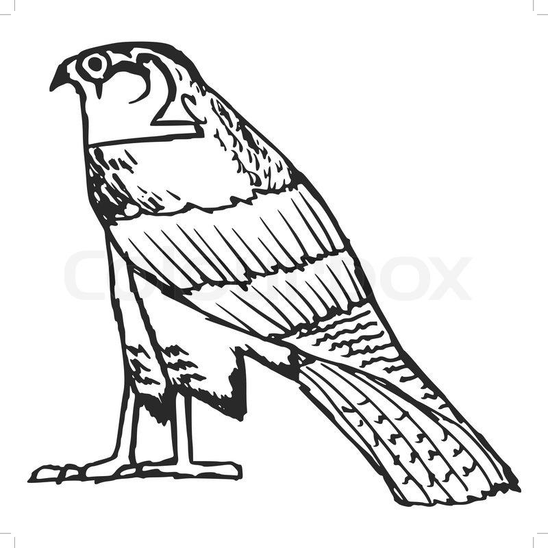 Sketch Illustration Of Falcon Ancient Egyptian Symbol Stock