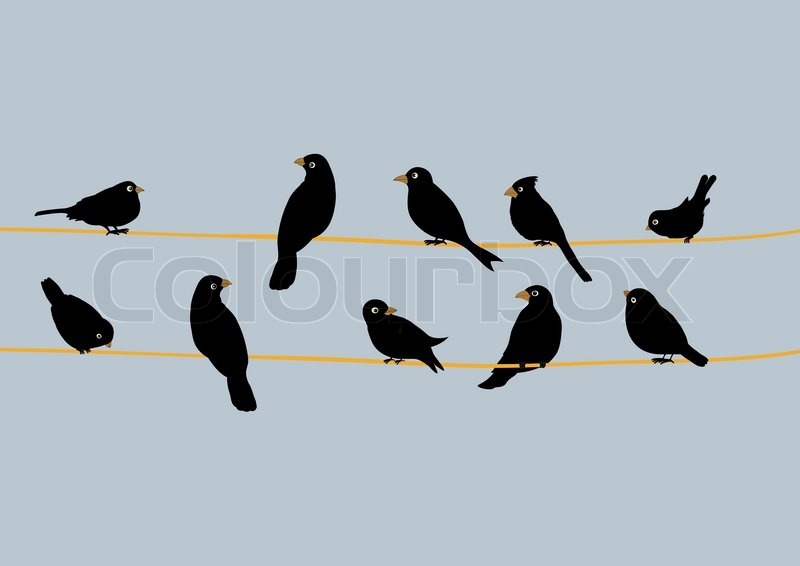 Birds to waxwings on wire | Stock Vector | Colourbox