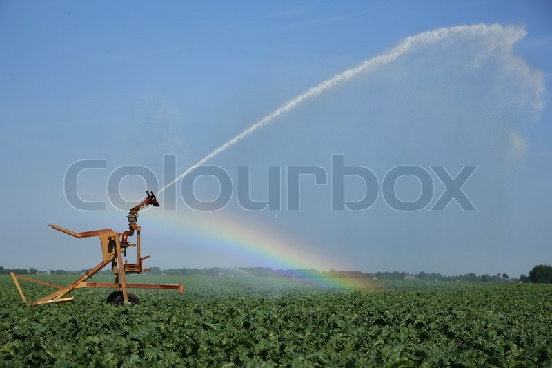 Field And Water Irrigation System Stock Photo Colourbox