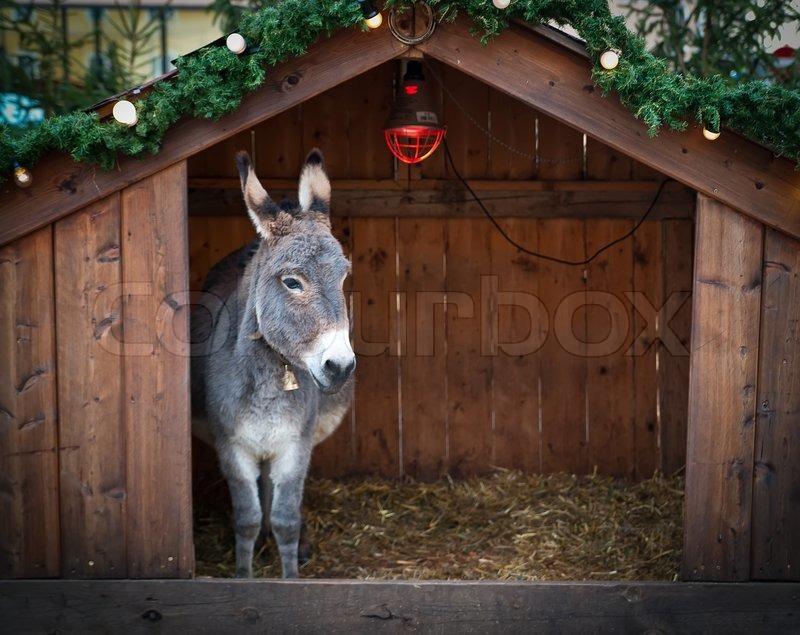 esel im stall aus holz weihnachten stockfoto colourbox. Black Bedroom Furniture Sets. Home Design Ideas