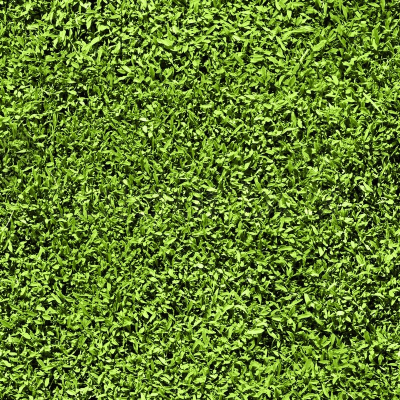 Grass Seamless Pattern Texture Tiles Short Length Of