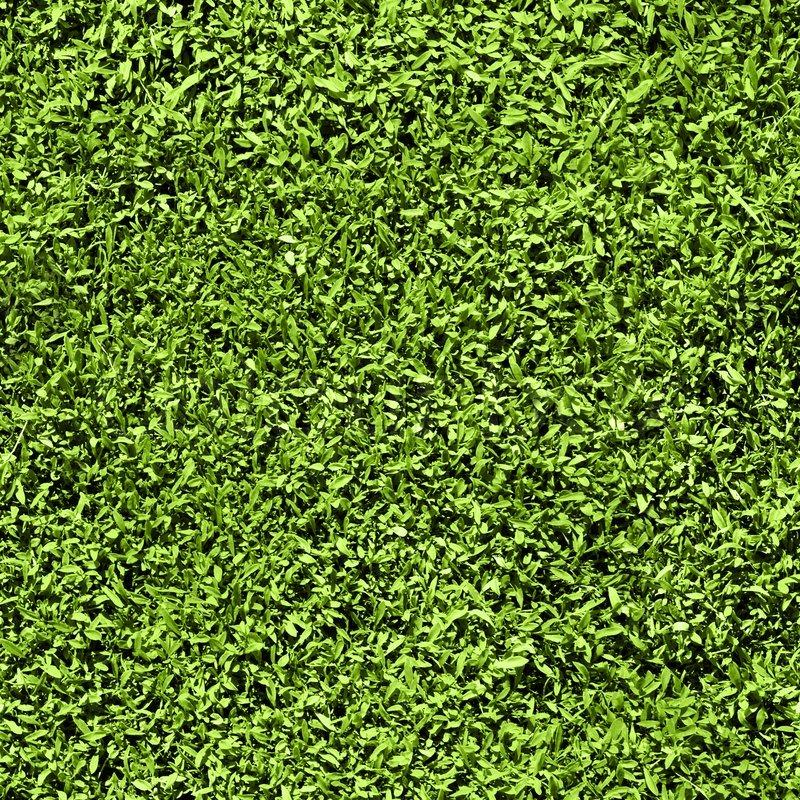 New background images environment free wallpaper - Grass Seamless Pattern Seamless Texture Tiles Short