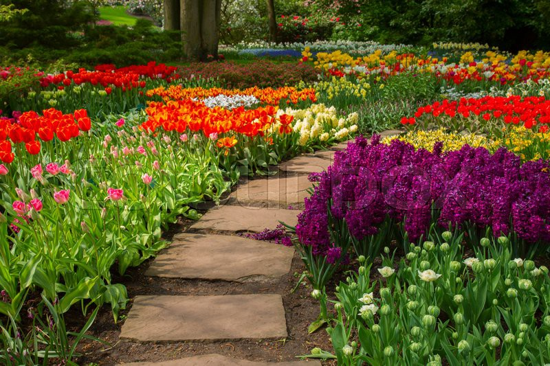 Stone path winding in spring flower garden with blossoming flowers, stock photo