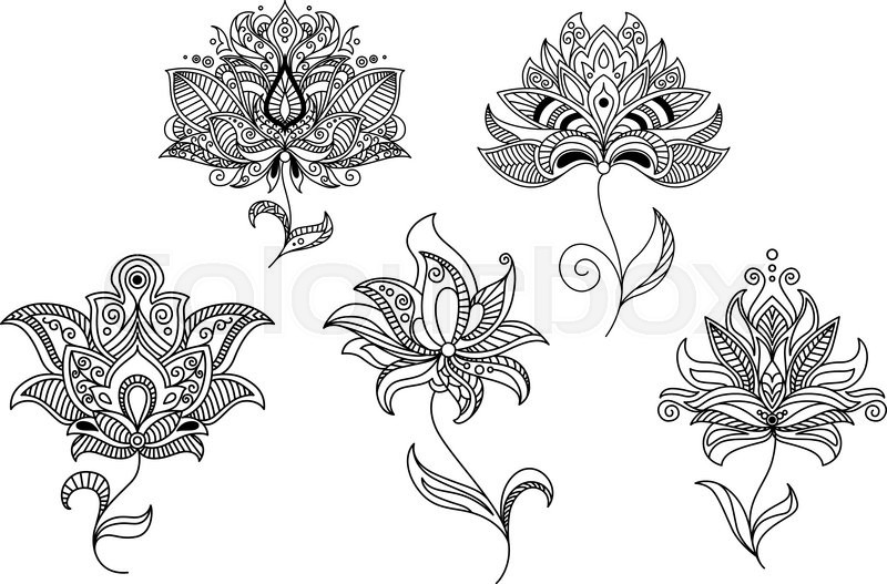 Persian And Indian Paisley Flowers And Decorative Elements