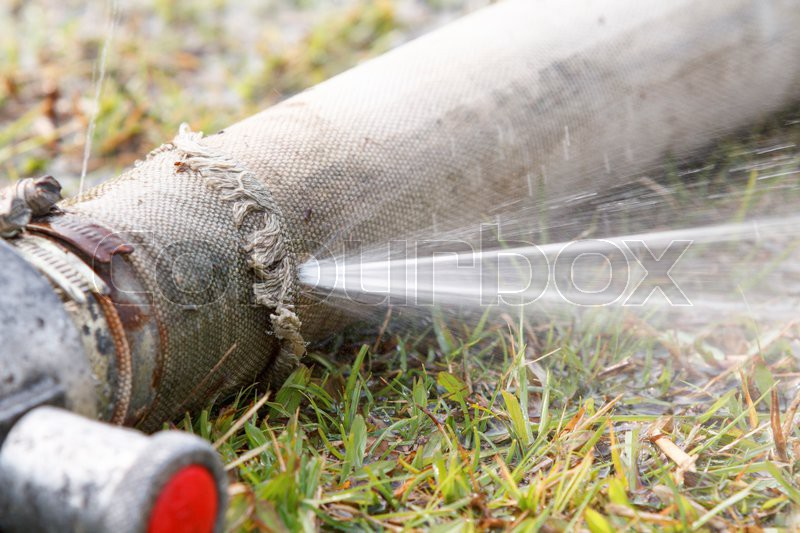 Wasting water - water leaking from a hole in a hose, stock photo