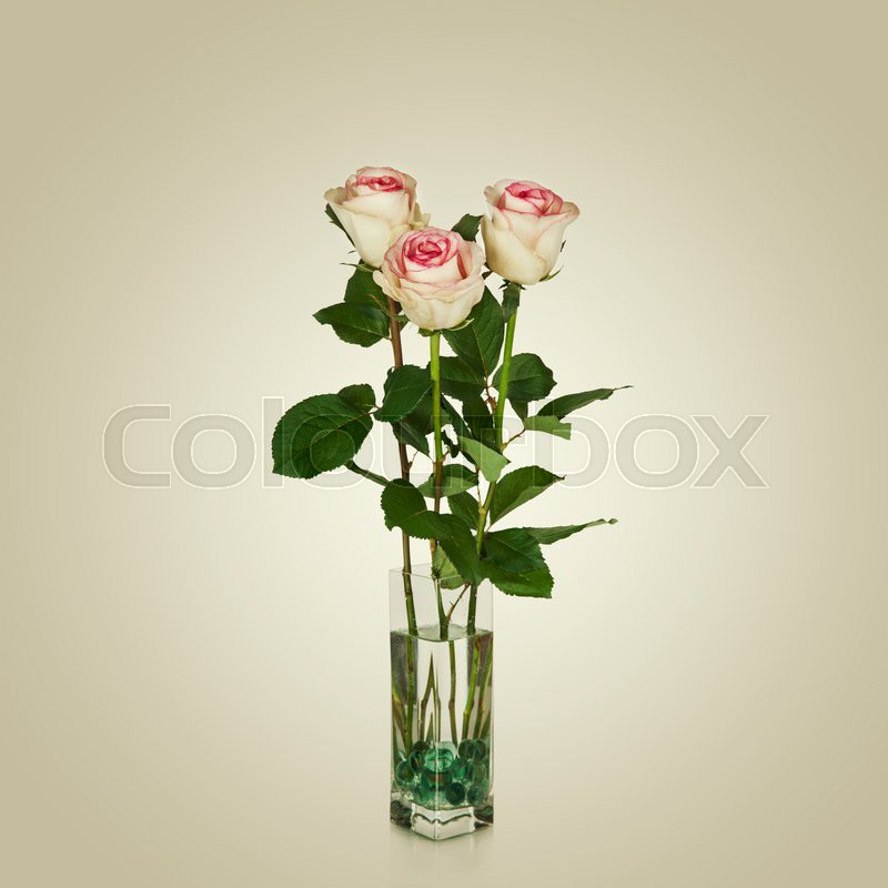 Bunch Of Pink Roses In Vase Stock Photo Colourbox