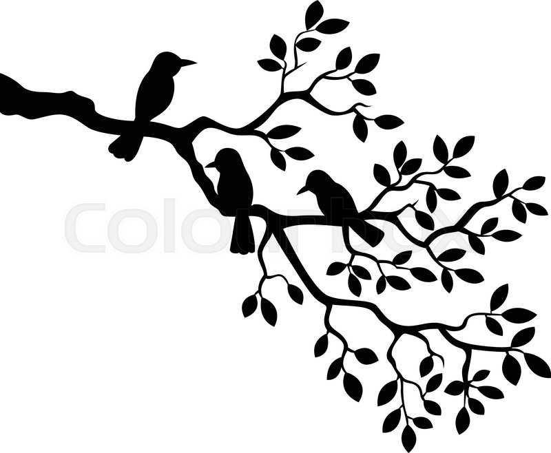 vector illustration of cartoon tree branch with bird silhouette rh colourbox com tree branch vector black tree branch vector black
