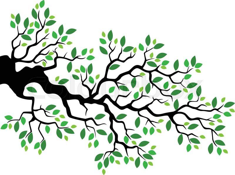 vector illustration of green leaf tree branch cartoon stock vector rh colourbox com tree branch vector free tree branch vector black