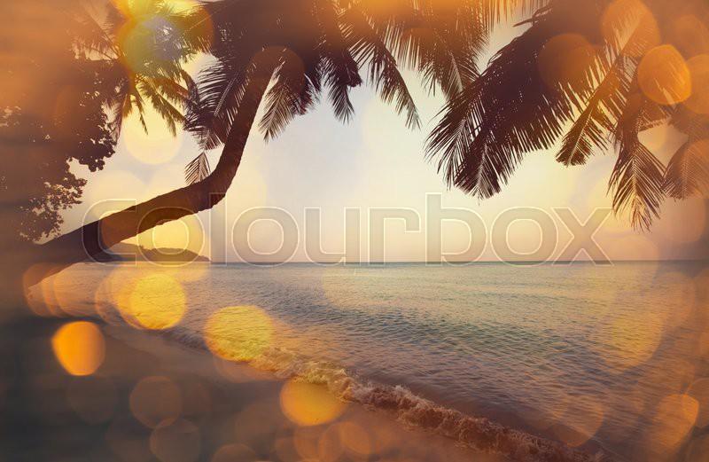 Serenity tropical beach, stock photo